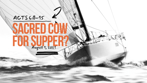 Acts 6:8-15 Sacred Cow For Dinner?