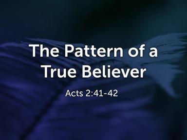 The Pattern Of A True Believer