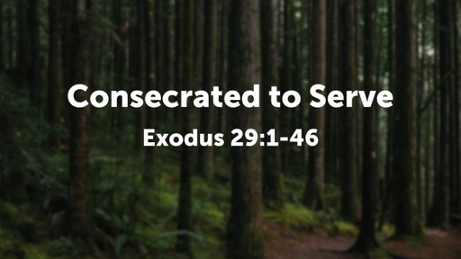 Consecrated to Serve
