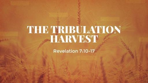 The Tribulation Harvest