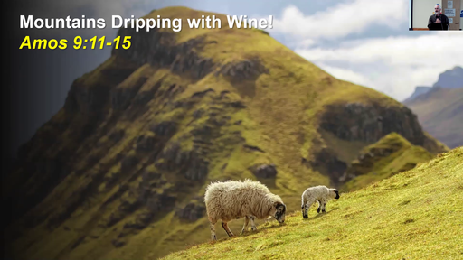 Mountains Dripping with Wine!