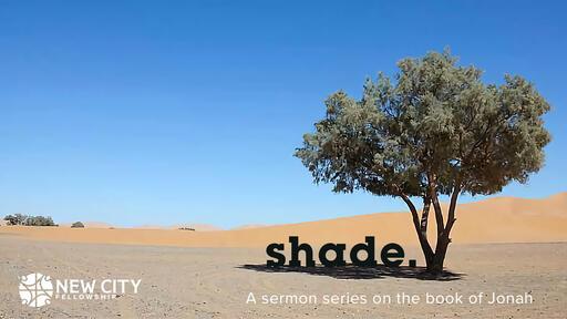 Jonah: Shade