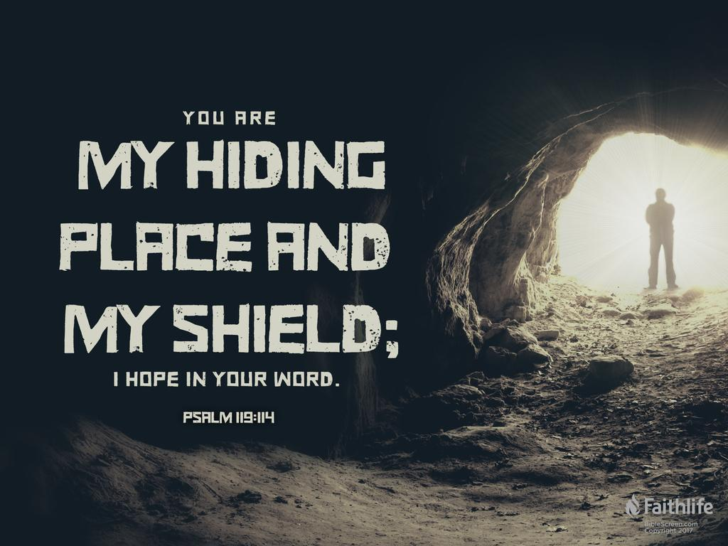 You are my hiding place and my shield; I hope in your word.