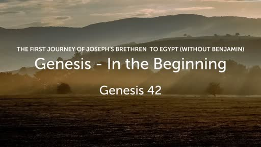 THE FIRST JOURNEY OF JOSEPH'S BRETHREN TO EGYPT (WITHOUT BENJAMIN)