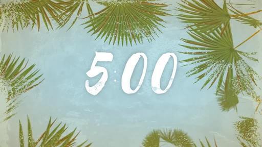 Summer Palm Leaves - Countdown 5 min
