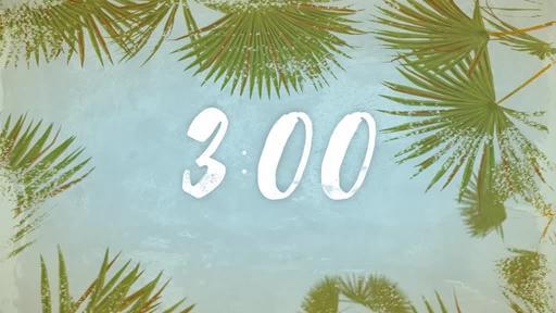 Summer Palm Leaves - Countdown 3 min