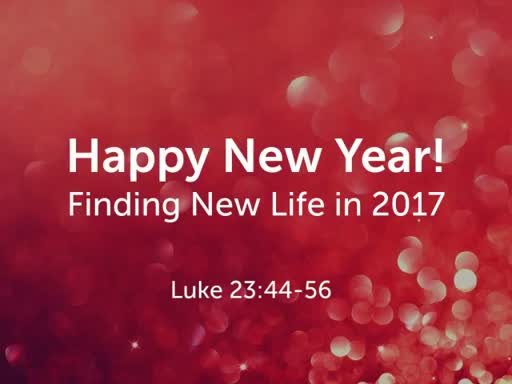 Finding New Life in 2017