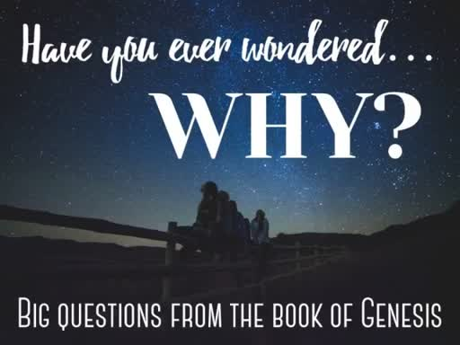 Have You Ever Wondered Why?