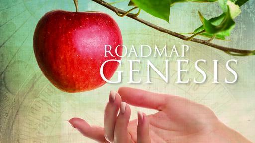 Roadmap Genesis