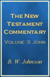 The New Testament Commentary Vol III: John