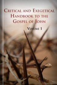 Critical and Exegetical Handbook to the Gospel of John, vol. 1