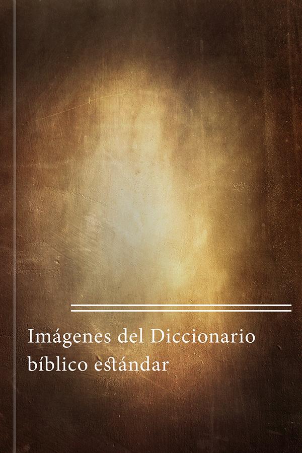 Imágenes del Diccionario bíblico estándar