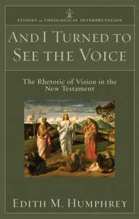 And I Turned to See the Voice: Rhetoric of Vision in the New Testament