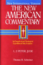 Thomas R. Schreiner, New American Commentary (NAC), B&H, 2003, 497 pp.