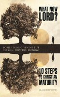 What Now Lord?: 10 Steps to Christian Maturity