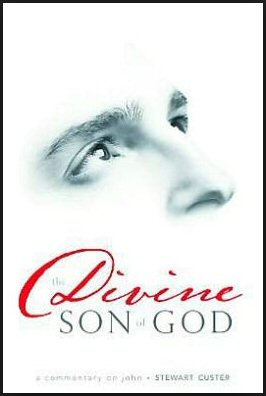 The Divine Son of God: A Commentary on John