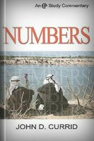 A Study Commentary on Numbers