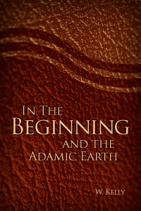 In the Beginning and the Adamic Earth