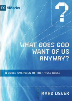 What Does God Want of Us Anyway?: A Quick Overview of the Whole Book