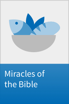 Miracles of the Bible Interactive