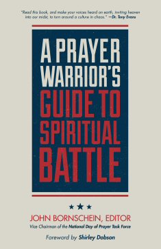 A Prayer Warrior's Guide to Spiritual Battle: The Front Line (Second Edition)