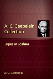 Types in Joshua