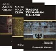 Minor Prophets Combo (3 vols.)