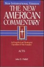 The New American Commentary: Acts