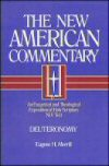 The New American Commentary Series Nac 41 Vols