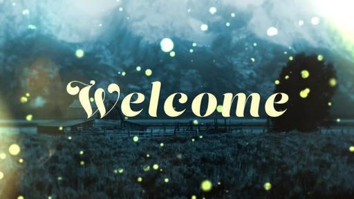 Summer Night Fireflies - Welcome