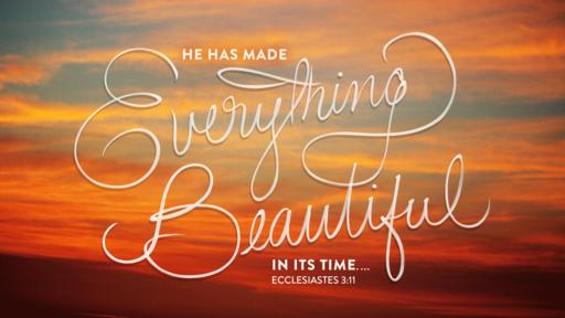Ecclesiastes 3:11 verse of the day image