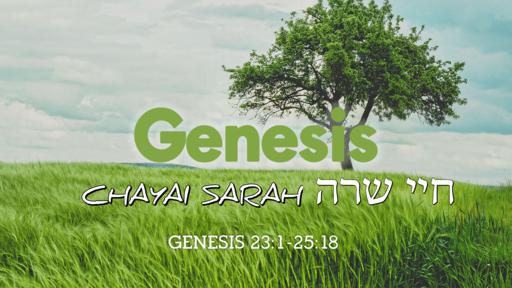 Parashah Ḥayyei Sarah חיי שרה