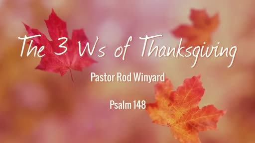 The 3 W's of Thanksgiving