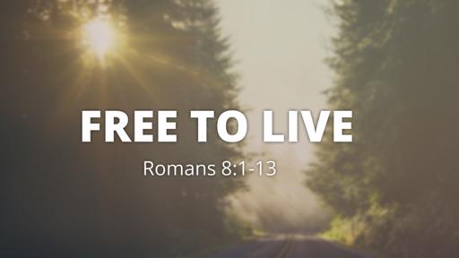Free to Hope
