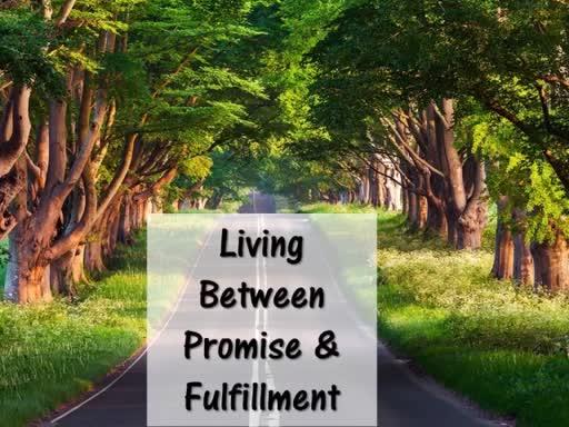 December 3, 2017 Living Between Promise & Fulfillment