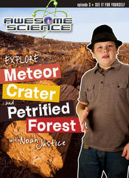 Explore Petrified Forest National Park and Meteor Crater