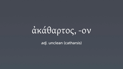 Vocabulary 19