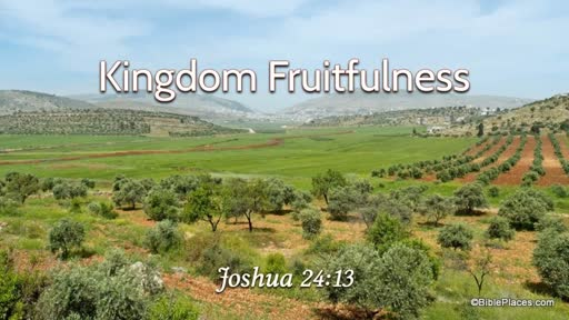Kingdom Fruitfulness