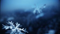 Blue Winter Snow content a PowerPoint Photoshop image