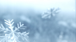 Winter Snow content a PowerPoint Photoshop image