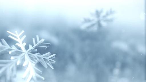Winter Snow - Content - Motion