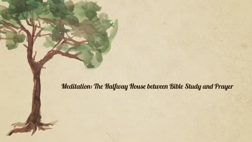 Meditation: The Halfway House between Bible Study and Prayer
