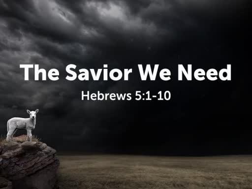 The SAvior We Need