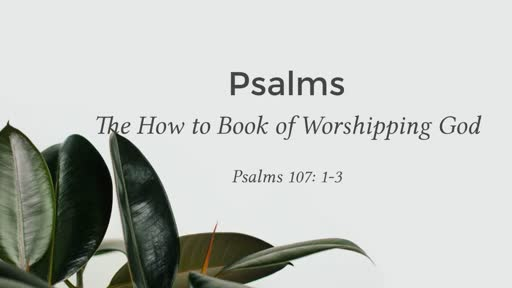 "Worship week 4 ""The book of Psalm"""