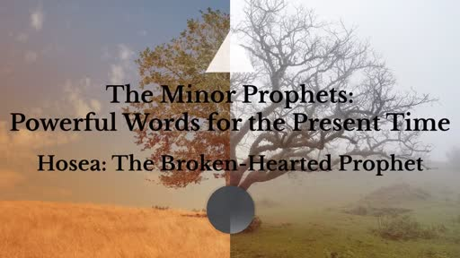 The Minor Prophets: Powerful Words for the Present Time