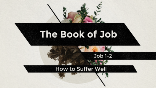 Job and the Problem of Evil