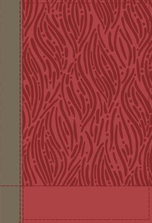 NIV Red/Tan