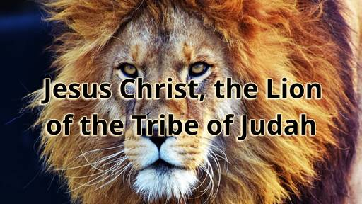 Jesus Christ, the Lion of the Tribe of Judah
