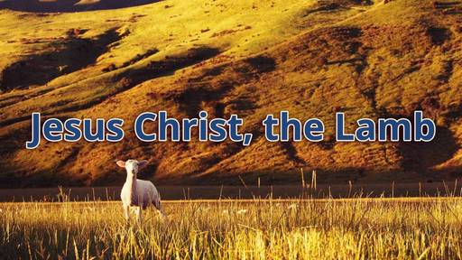 Jesus Christ, the Lamb