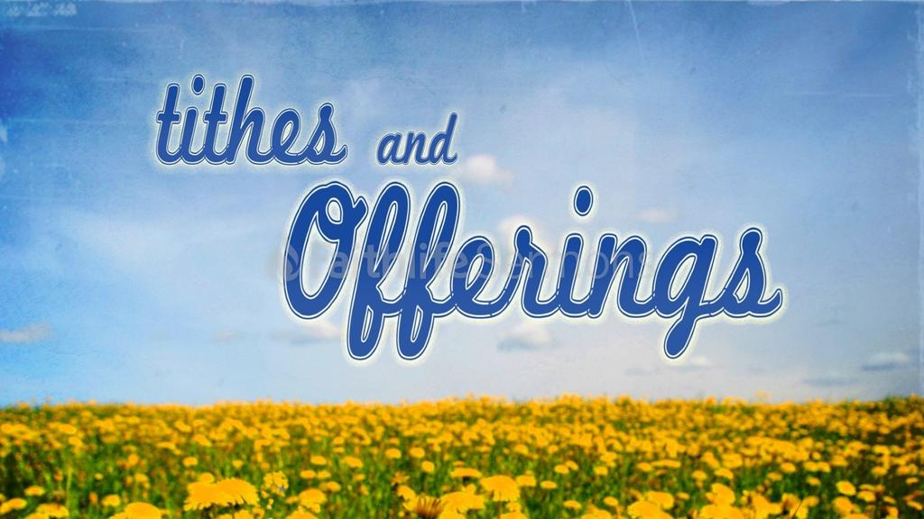 Dandelion Field tithes and offerings preview